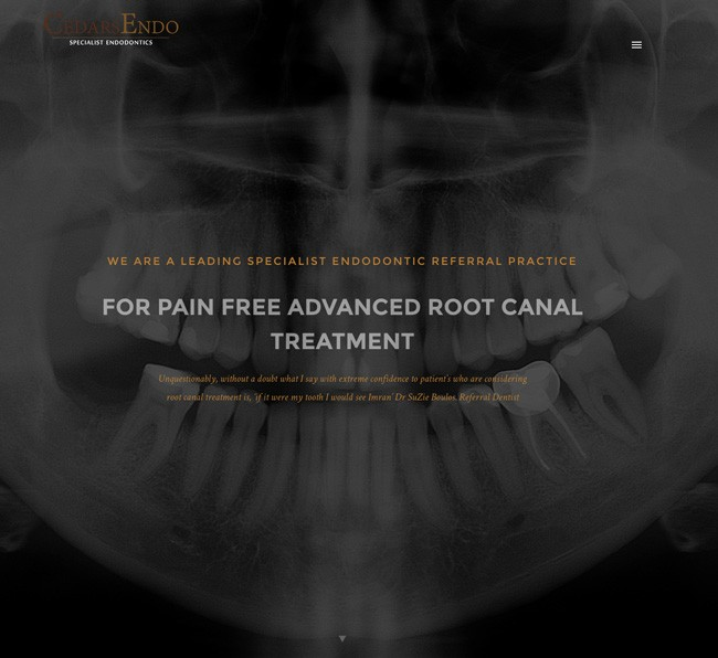 Web Design Clinic London Surrey Cedars Endo - Endodontist