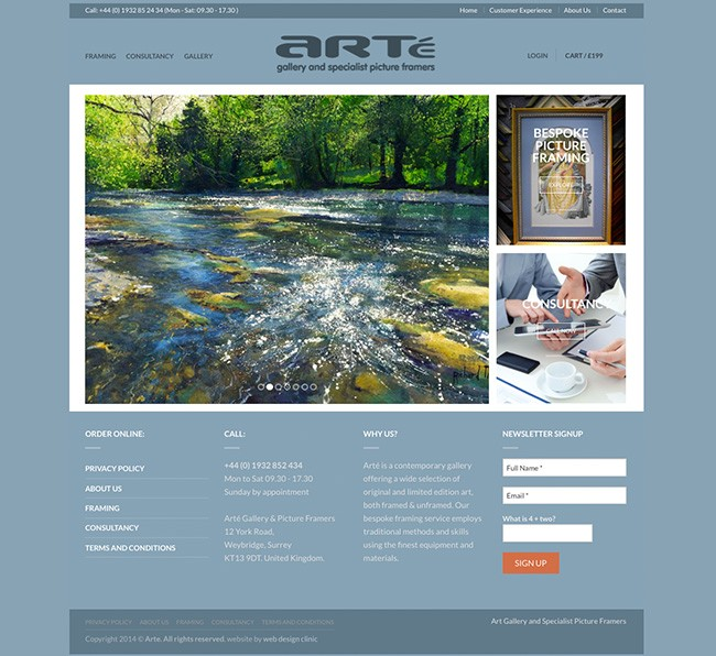 Art Gallery website development by Web Design Clinic London Surrey